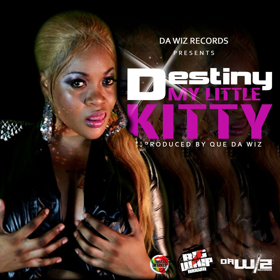 DESTINY SPARTA – MY LITTLE KITTY – RAW & CLEAN – DA WIZ RECORDS