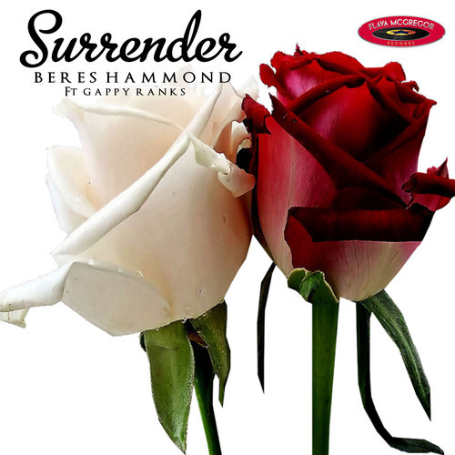 BERES-HAMMOND-FT-GAPPY-RANKS-SURRENDER
