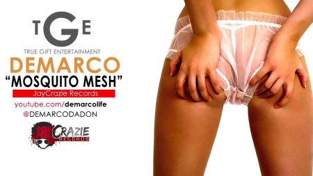 DEMARCO-MOSQUITO-MESH-cover