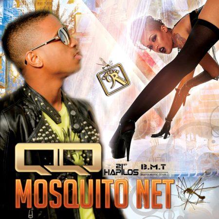 QQ – MOSQUITO NET – TWELVE 9 RECORDS