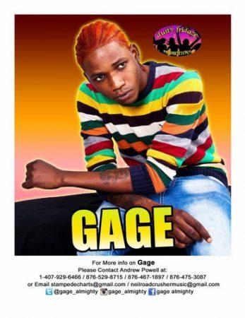 gage-2014