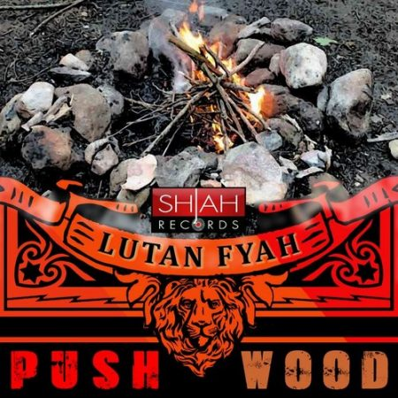 Lutan-Fyah-Push-Wood-Cover