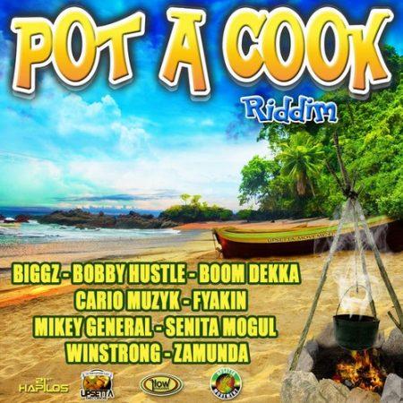 POT-A-COOK-RIDDIM-COVER