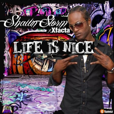 Shawn-Storm-Life-Is-Nice-Artwork