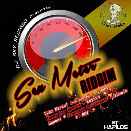 GAGE – JAH JAH – S*X METER RIDDIM – DJ SKY RECORDS