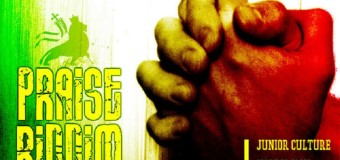 PRAISE RIDDIM [FULL PROMO] – KIMICHI RECORDS
