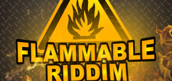 FLAMMABLE RIDDIM [FULL PROMO] – SHORTBOSS MUZIK
