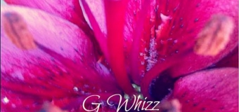 G WHIZZ – CHILD – ASHA D RECORDS