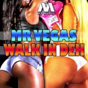 MR-VEGAS-WALK-IN-DEH