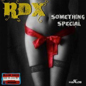 rdx-something-special-artwork