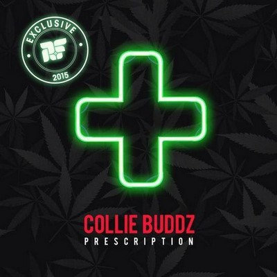 collie-buddz-prescription