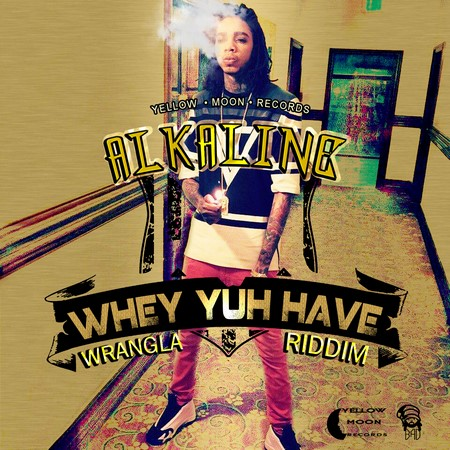 alkaline-whey-you-have-2015