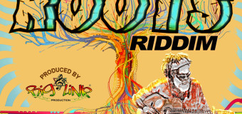 SOUL ROOTS RIDDIM [FULL PROMO] – BIG LINK PRODUCTION