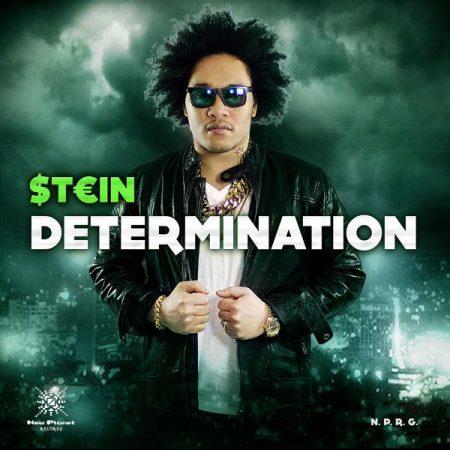 determination-Cover
