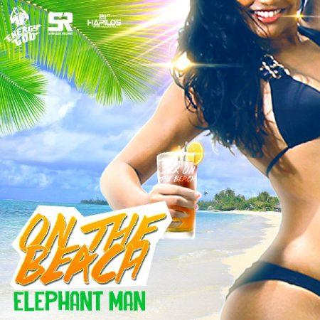 elephant-man-on-the-beach-artwork-2015