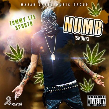 tommy-lee-sparta-numb-skunk-artwork
