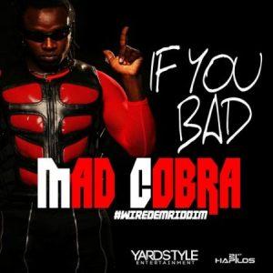 Mad-cobra-If-You-Bad-wire-dem-riddim-artwork