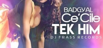 CECILE – TEK HIM – DJ FRASS RECORDS