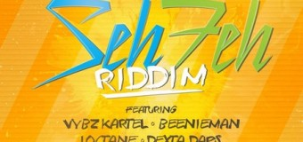SEH FEH RIDDIM [FULL PROMO] – TJ RECORDS