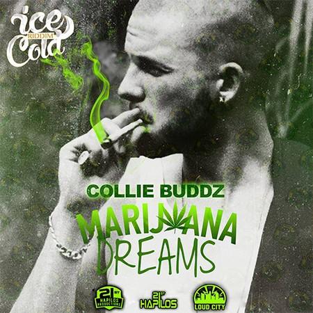 collie-budz-marijuana-dreams-cover