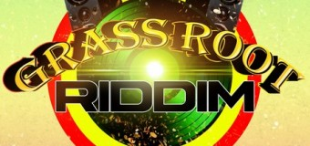 GRASS ROOT RIDDIM [FULL PROMO] – FREE WILLY MUSIC