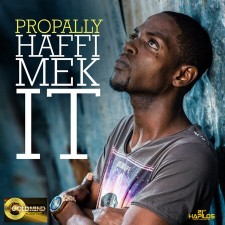 Propally-haffi-mek-it-_1
