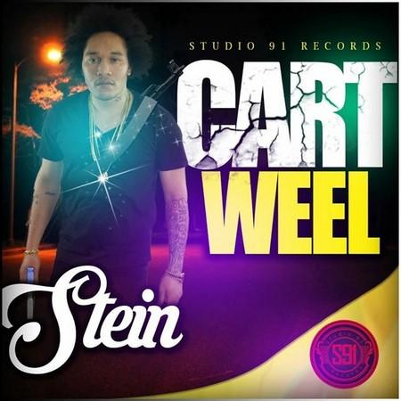 STEIN-CART-WEEL-_1