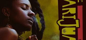 JAH9 – THE MARIJUANA – STEAMAZ RIDDIM – BIGGY MUSIC