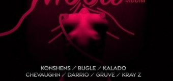 MOOD RIDDIM [FULL PROMO] – HITGRUVES MUSIC