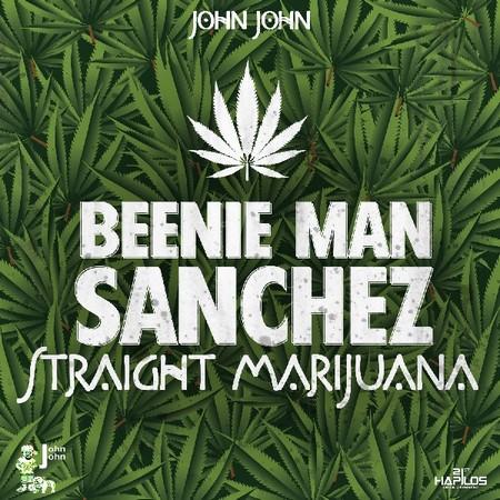 beenie-man-ft-sanchez-straight-marijuana-cover BEENIE MAN & SANCHEZ - STRAIGHT MARIJUANA [MAIN+INSTRUMENTAL] - JOHN JOHN RECORDS