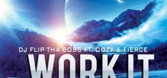 DJ FLIP THA BOSS FT. OOZY & FIERCE – WORK IT FOR ME – FLIPSIDE RECORDZ