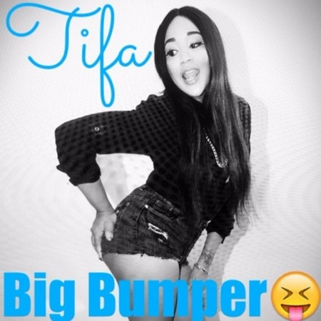 TIFA-BIG-BUMPER-COVER
