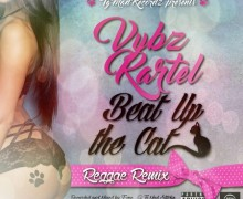 VYBZ KARTEL – BEAT UP THE CAT [RAW] [REGGAE REMIX] – TG MAD RECORDZ