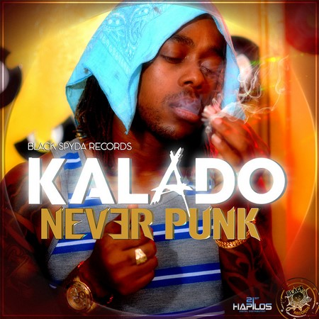 kalado-never-punk-artwork