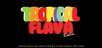 TROPICAL FLAVA RIDDIM [FULL PROMO] – TROYTON RAMI & BLACK SHADOW MUSIC