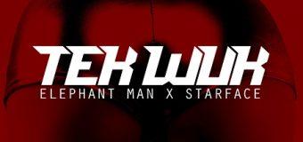 ELEPHANT MAN & STARFACE – TEK WUK [MAIN+RADIO+INSTRUMENTAL] – ENERGY GOD PRODUCTIONS