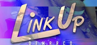 DEMARCO – LINK UP [RAW & RADIO] – DUNWELL PRODUCTIONS