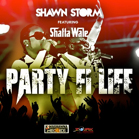 shawn storm ft shatta wale - party fi life