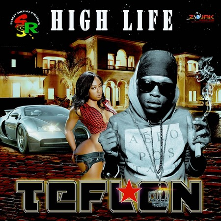Teflon - high life artwork