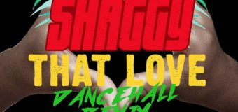SHAGGY FT ALKALINE – THAT LOVE (DANCEHALL REMIX) – TONY KELLY