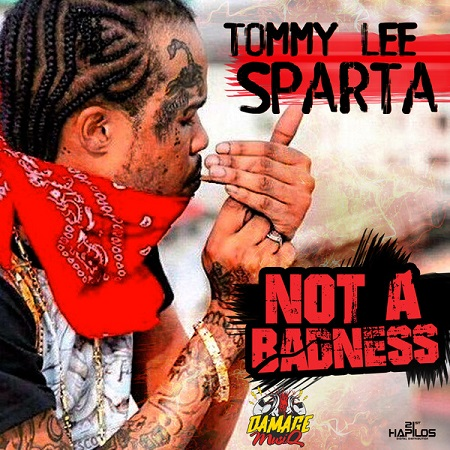 TOMMY LEE SPARTA - NOT A BADNESS