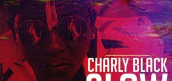 CHARLY BLACK – SLOW MOTION (TE AMO TE AMO) – TROYTON MUSIC