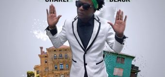 CHARLY BLACK – WE CHANGE MONEY – SUIT & TIE RIDDIM – YGF RECORDS