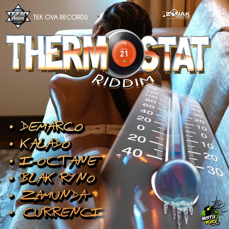 Thermostat Riddim