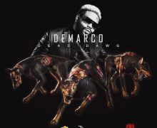 DEMARCO – DEAD DAWG – ARMZ HOUSE RECORDS