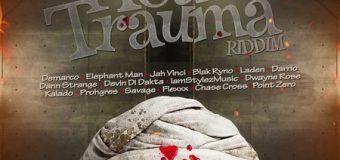 HEAD TRAUMA RIDDIM [FULL PROMO] – JAYCRAZIE RECORDS