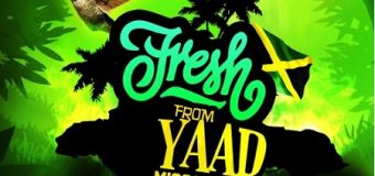NEFATARI – FRESH FROM YARD (T-SHIRT  REMIX)