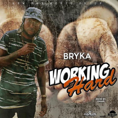 Bryka - Working Hard