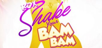 RDX – SHAKE YOUR BAM BAM – APT.19 MUSIC