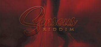 SENSOUS RIDDIM V.2 [FULL PROMO] – TROYTON MUSIC